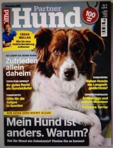 Partner Hund 11/2015
